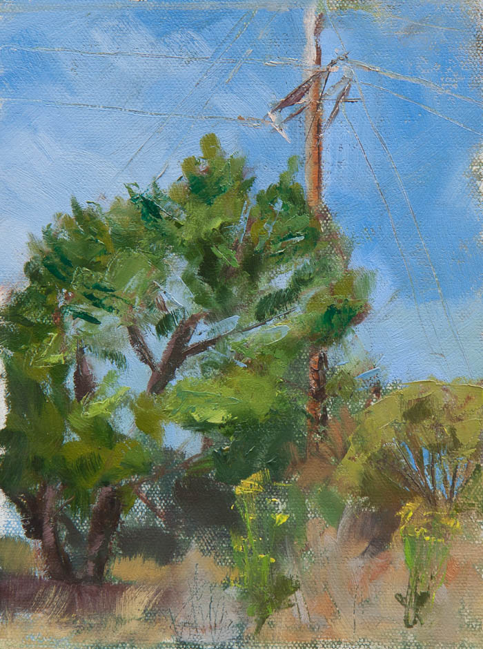 Power Pole Next to Tree. Oil on canvas, 8 x 6 inches, July 2013.
