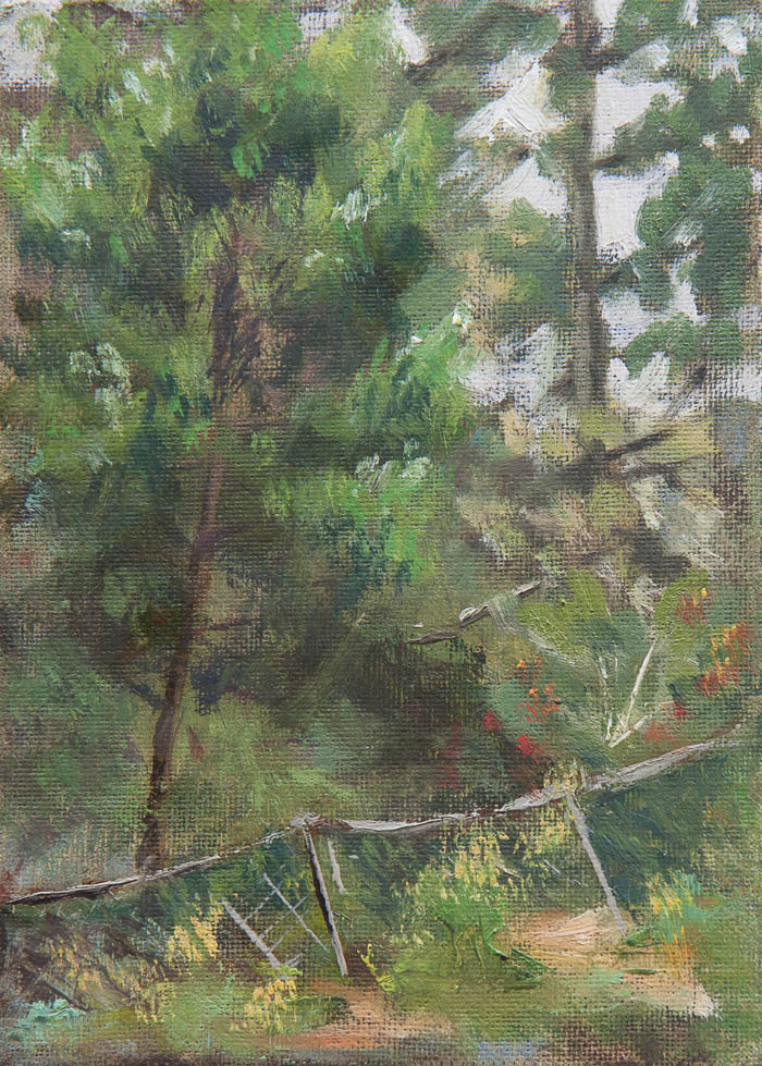 Old Fence Plein Air Study. Oil on canvas, 7 x 5 inches, July 2013.