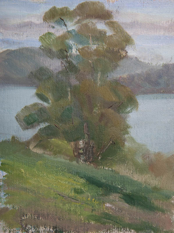 Sausalito Lunch Break Study 07.  Oil on canvas, 8 x 6 inches, January 2014.