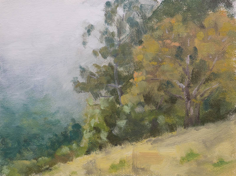 Sausalito hills lunch time painting study.  Oil on canvas, 6 x 8 inches, August 2014.