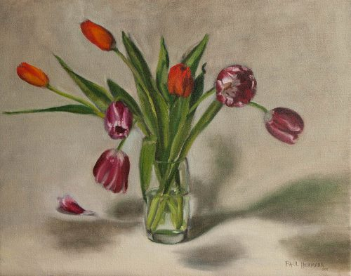 Tulips in Glass. Oil on canvas, 16 x 20 inches, 2011. By Paul Hermann.