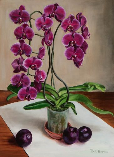 Orchid with Plums. Oil on canvas, 24 x 18 inches, August 2011. By Paul Hermann.