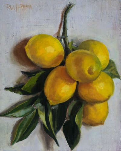 Lemons On Branch On Wall Version 1. Oil on canvas, 10 x 8 inches, 2017. By Paul Hermann.
